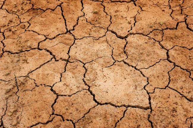floxed earth fluoroquinolones environment