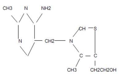 thiamine chemistry