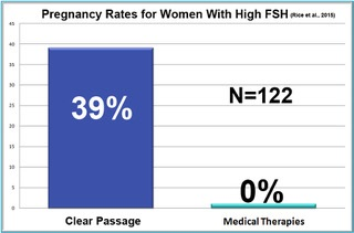 pregnancy rates for women with high FSH