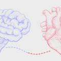 hypertension, autonomic system and thiamine