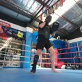 kickboxing, basal ganglia, narcolepsy