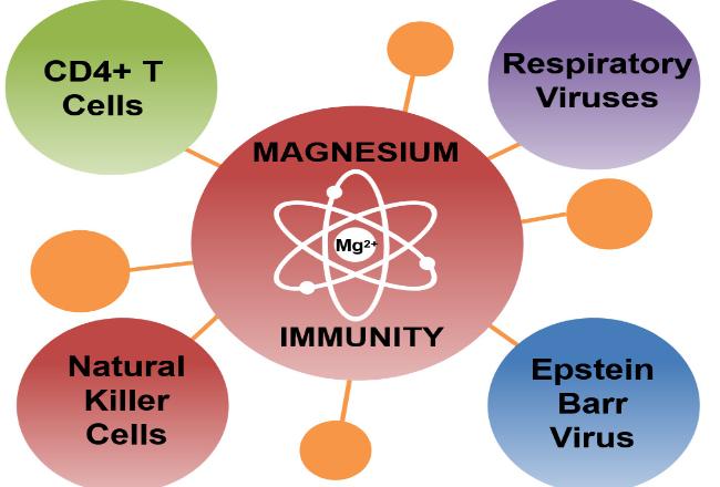 Magnesium and immune function
