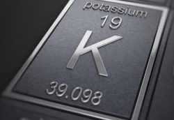 The role of thiamine in potassium deficiency