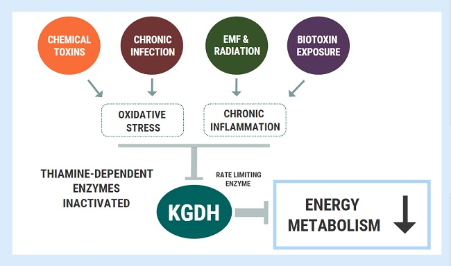 KDGH enzyme modulation