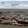 wrack line plastic pollution