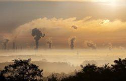 Environmental pollutants microbiome